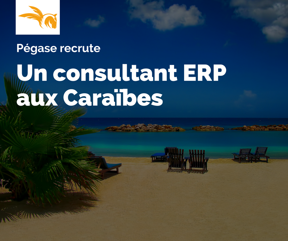 erp-consultant-guadeloupe